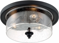 Nuvo 60-7291 Bransel Modern Matte Black 15  Ceiling Lighting Fixture