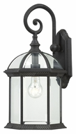 Nuvo 604966 Boxwood Medium Textured Black 19 Inch Tall Outdoor Wall Sconce