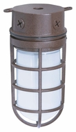 Nuvo 76625 Industrial Style Surface Mount Small Outdoor Old Bronze Ceiling Light - 9 Inches Tall