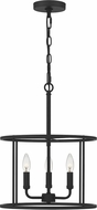 Quoizel ABR2814MBK Abner Contemporary Matte Black Drop Lighting Fixture