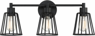 Quoizel ATT8603EK Atticus Modern Earth Black 3-Light Lighting For Bathroom