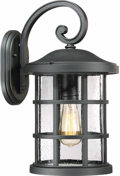 Quoizel CSE8410EK Crusade Earth Black Outdoor 10  Wall Mounted Lamp