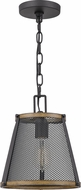 Quoizel LIM1510MBK Lindstrom Matte Black Mini Ceiling Pendant Light