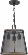 Quoizel LIM1513MBK Lindstrom Matte Black Drop Ceiling Light Fixture
