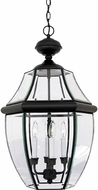 Quoizel NY1180K Newbury Mystic Black Outdoor 16  Drop Lighting