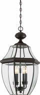 Quoizel NY1180Z Newbury Medici Bronze Outdoor 16  Drop Ceiling Lighting
