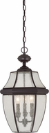 Quoizel NY1912Z Newbury Medici Bronze Outdoor Hanging Light