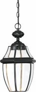 Quoizel NYCL1911K Newbury Clear Mystic Black LED Outdoor Ceiling Light Pendant