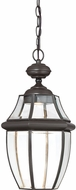 Quoizel NYCL1911Z Newbury Clear Medici Bronze LED Outdoor Ceiling Pendant Light