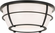 Quoizel QF3412EK Modern Earth Black Overhead Lighting Fixture