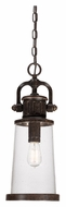 Quoizel SDN1908IB Steadman 8 Inch Diameter Vintage Imperial Bronze Finish Outdoor Hanging Lantern