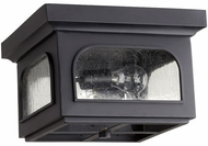 Quorum 3603-13-69 Fuller Noir Exterior Ceiling Light Fixture