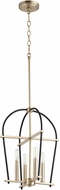 Quorum 687-6980 Espy Modern Noir w/ Aged Brass 14.25  Foyer Lighting Fixture