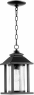 Quorum 7273-69 Crusoe Noir Exterior Hanging Pendant Light
