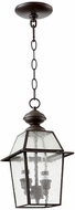 Quorum 728-2-136 Duvall Bronze w/ Clear/Seeded Exterior Hanging Light Fixture