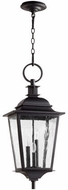 Quorum 7731-3-69 Pavilion Noir Exterior Hanging Light