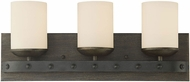 Savoy House 8-9542-3-196 Alsace Country Reclaimed Wood 3-Light Lighting For Bathroom