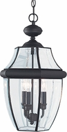 Seagull 6039-12 Lancaster Traditional Black Exterior Pendant Lighting Fixture