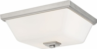 Seagull 7513702-962 Ellis Harper Contemporary Brushed Nickel Overhead Light Fixture