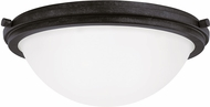 Seagull 75662EN-839 Winnetka Blacksmith LED Home Ceiling Lighting