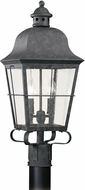 Seagull 8262EN-46 Chatham Traditional Oxidized Bronze LED Outdoor Lamp Post Light Fixture