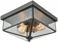 Thomas CE9202310 Lankford Oil Rubbed Bronze Exterior Ceiling Light Fixture