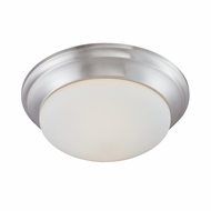 Thomas Lighting 190033217 Ceiling Essentials Brushed Nickel Finish 14.25  Wide Ceiling Lighting