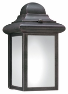 Thomas Lighting PL948063 Outdoor Essentials Painted Bronze Finish 9 Tall Outdoor Lighting Sconce