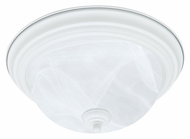 Thomas Lighting SL869218 Ceiling Essentials Textured White Finish 13.25  Wide Flush Mount Light Fixture