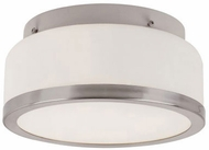 Trans Globe 10092-BN Rise Brushed Nickel 8.5 Ceiling Light Fixture