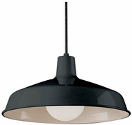Trans Globe 1100-BK Sherman Modern Black Pendant Light