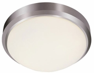 Trans Globe 13882-BN Bliss Brushed Nickel 15  Home Ceiling Lighting