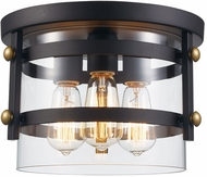 Trans Globe 14210-ROB-AG Anderson Modern Rubbed Oil Bronze / Antique Gold 12  Ceiling Light