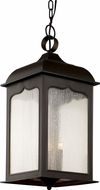 Trans Globe 40234-ROB Rubbed Oil Bronze Outdoor Pendant Light