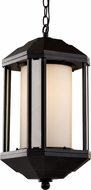 Trans Globe 40255-BK 40250 Series Black Exterior Lighting Pendant