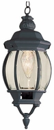 Trans Globe 4065 Parsons Traditional Outdoor 6.5 Pendant Hanging Light