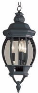 Trans Globe 4066 Parsons Traditional Exterior 7.5 Hanging Light Fixture
