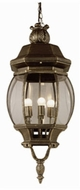Trans Globe 4067 Parsons Traditional Outdoor 11 Drop Lighting