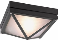 Trans Globe 43301-BK Harland Modern Black Outdoor 8.5  Overhead Lighting Fixture