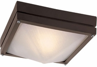 Trans Globe 43302-RT Harland Contemporary Rust Exterior 8.5  Ceiling Light Fixture