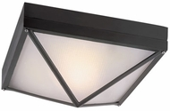 Trans Globe 43303-BK Harland Modern Black Exterior 12.5  Flush Mount Lighting
