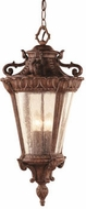 Trans Globe 4843-PA Heritage Traditional Patina Outdoor Ceiling Pendant Light