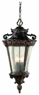 Trans Globe 4843 The Outdoor Collection VIII Traditional Style Outdoor Pendant Light