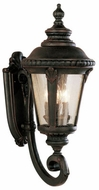 Trans Globe 5041 Commons Traditional Exterior 9.5 Wall Light Sconce