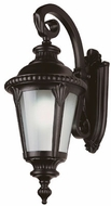 Trans Globe 5044 Commons Traditional Outdoor 9.5 Wall Sconce Light