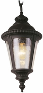 Trans Globe 5049 Commons Traditional Outdoor Ceiling Light Pendant
