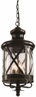 Trans Globe 5126-ROB Chandler Traditional Rubbed Oil Bronze Outdoor Pendant Light
