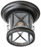 Trans Globe 5128-ROB Chandler Traditional Rubbed Oil Bronze Outdoor Ceiling Lighting