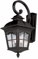 Trans Globe 5420-BK Briarwood Traditional Black Outdoor Wall Sconce Lighting