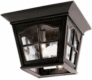 Trans Globe 5427-BK Briarwood Traditional Black Outdoor Ceiling Light Fixture